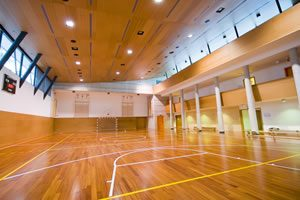 Specialists in Sports Hall Maintenance and Repair